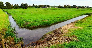 Dofinansowanie inwestycji chroniących przed ASF lub powodzią.
